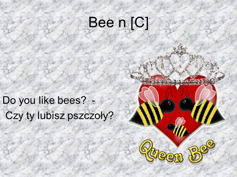 Bee n [C] Do you like bees - Czy ty lubisz pszczoły